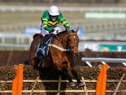 Binocular: One of eight entries for Nicky Henderson