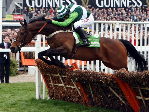 Rock On Ruby: Can win the Champion Hurdle again