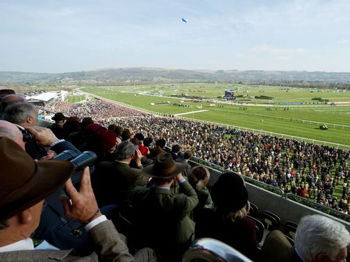 There will be no action at Cheltenham on New Year's Day.