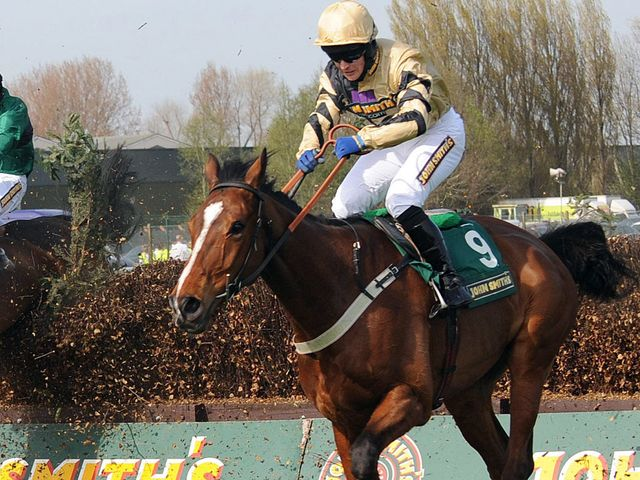 Prince De Beauchene: On trial for the Grand National