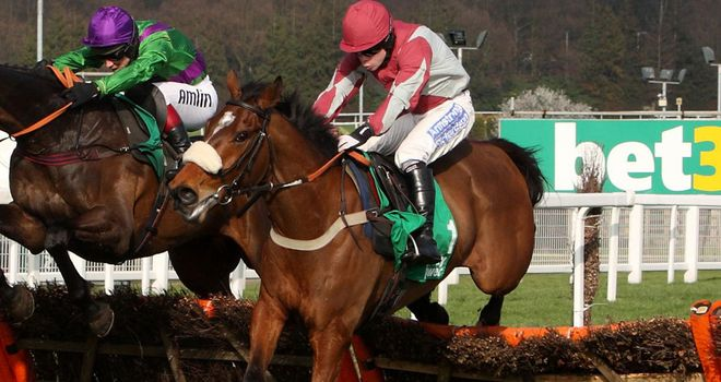 Ambion Wood: Set to debut over fences