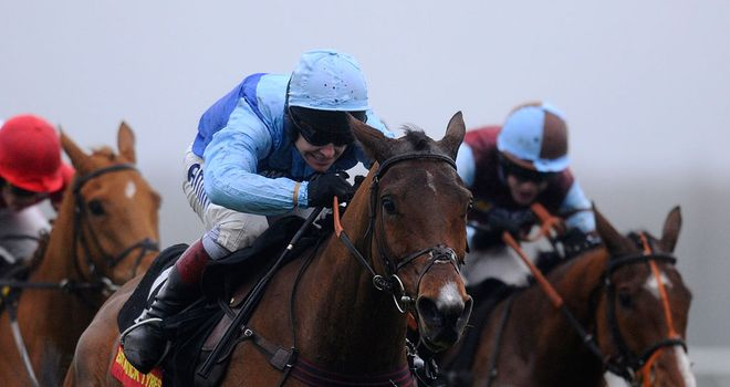 Fingal Bay: A winning debut over fences