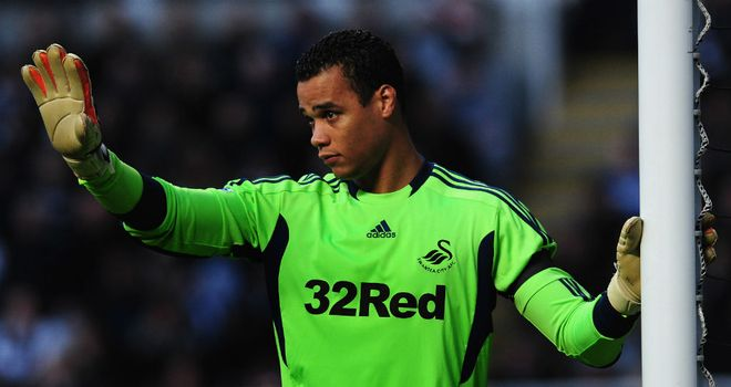 Michel Vorm: Helped Swansea to a clean sheet at Goodison Park
