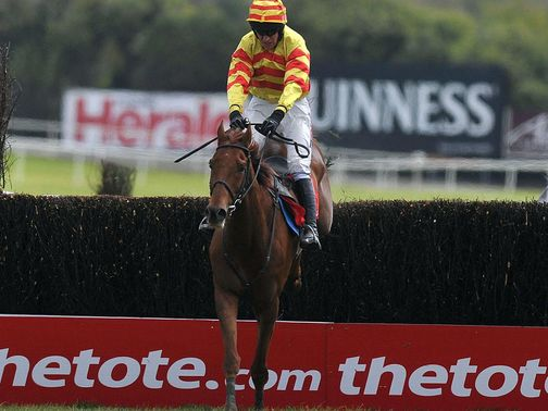 China Rock could be aimed at the Ryanair Chase