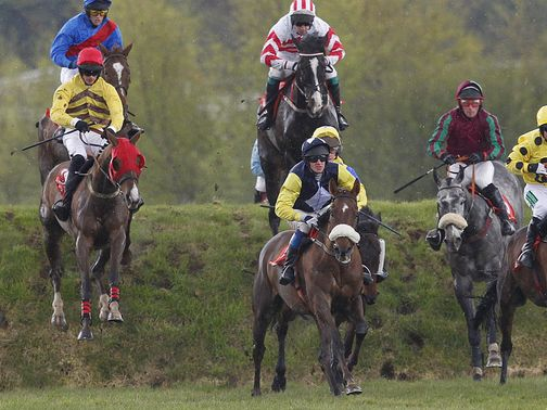 The action goes ahead at Punchestown.