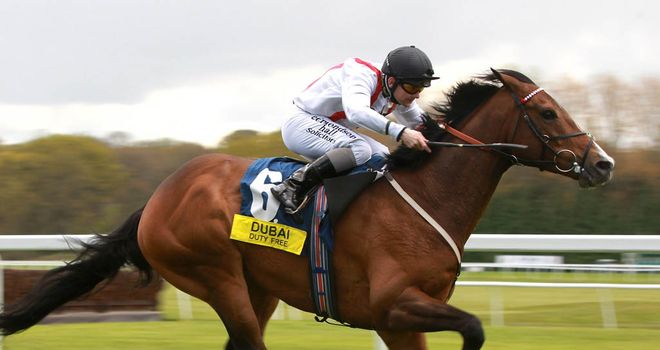 Harris Tweed: Impressive winner at Newbury and Melbourne Cup now the target