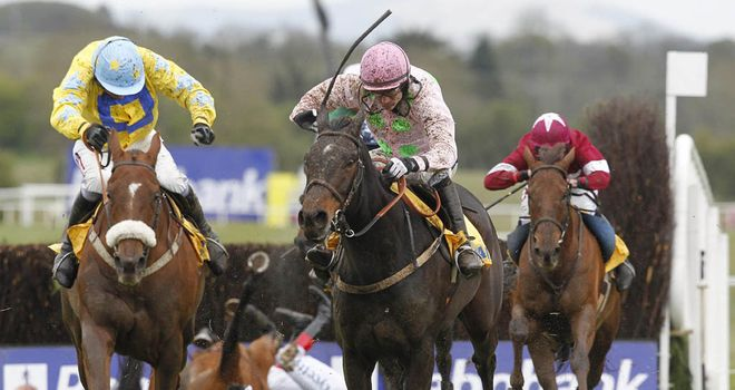 Lucky William (l): Edges out Blackstairmountain at Punchestown