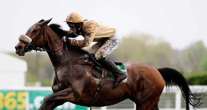 Tidal Bay: Tops Hennessy Gold Cup weights