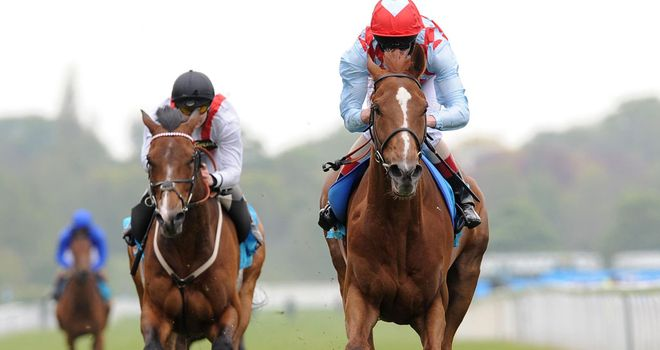 Red Cadeaux: Given Japanese assingment