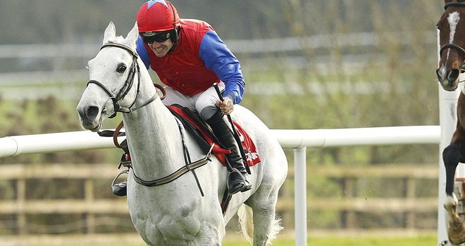 Thousand Stars: The one to beat in the Boyne Hurdle
