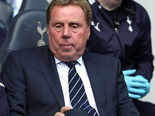 Harry Redknapp: Representatives in talks with Ukraine
