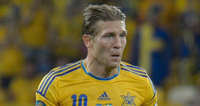 Andriy Voronin: Setting his sights on the quarter-finals of Euro 2012