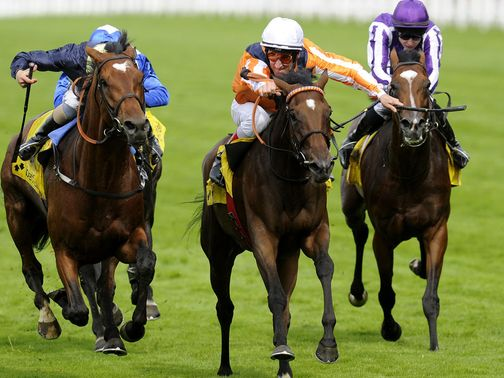 Danedream: Has been ruled out of the Arc
