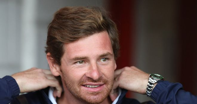 Andre Villas-Boas: Looking to put his own stamp on Tottenham's squad