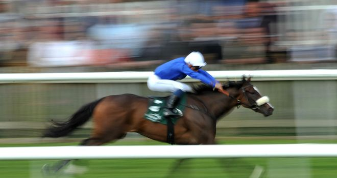 Certify: Had a head to spare in the May Hill Stakes