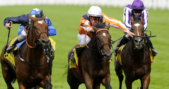 Danedream: Has been retired to stud