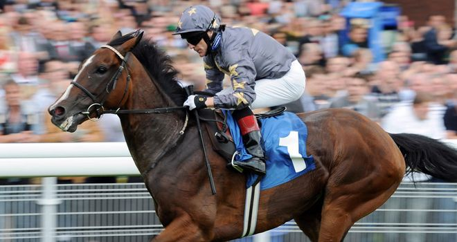Mount Athos: Well backed winner