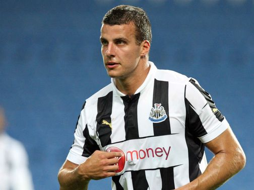 Pardew wants to protect Taylor (pictured) from injury