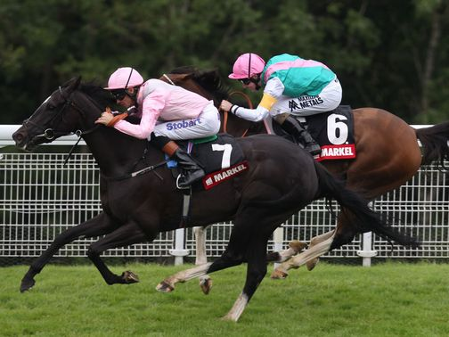 The Fugue (left) rates a worthy favourite