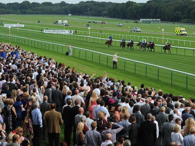 A bumper Haydock crowd watches Ladys First battle to victory