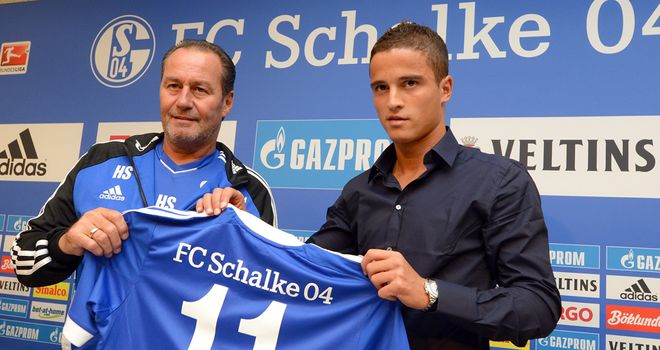 Ibrahim Afellay: Will spend the remainder of the season at Schalke