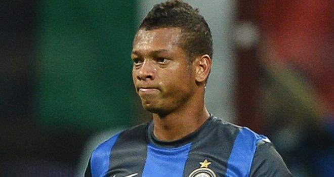Fredy Guarin: Injury blow