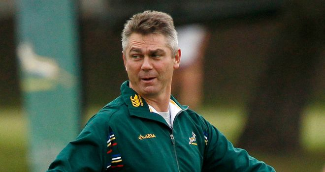 Heyneke Meyer: Bemoaned his side's inexperience following their weekend draw