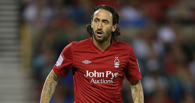 Jonathan Greening: On trial at Hartlepool