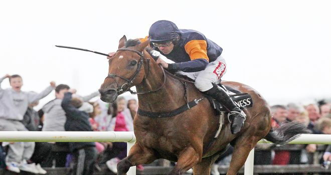 Rebel Fitz: Survived a late scare to win the Galway Hurdle