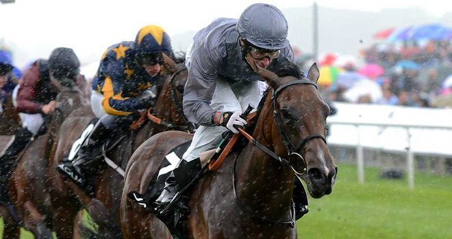 Rosdhu Queen: Looking to add to York spoils
