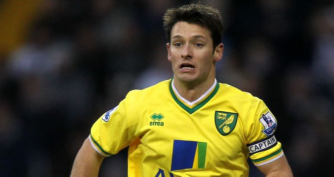 Wes Hoolahan: Called up after impressing Giovanni Trapattoni in Norwich's win over Arsenal