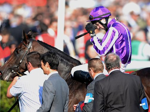 Camelot: Beaten into second place in the Ladbrokes St Leger