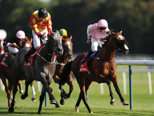 Sir Graham Wade: Fancied to follow up his impressive win at Haydock