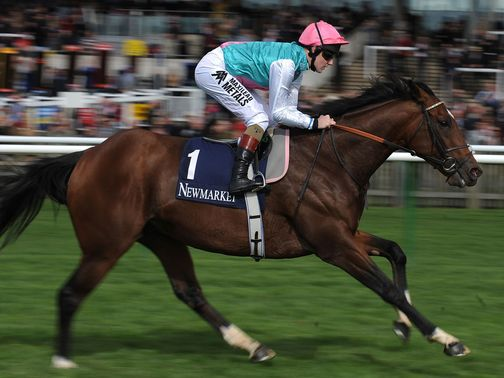 Frankel: Set to face seven rivals at Ascot