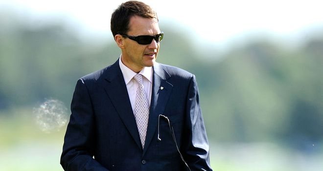 Aidan O'Brien: Curragh gallop
