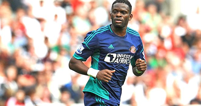 Louis Saha: Sunderland striker is impressed with the set-up on Wearside
