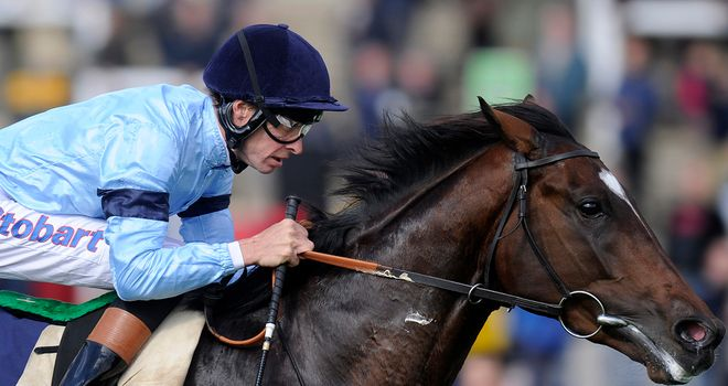 Telescope: Could reappear in Dante at York in May