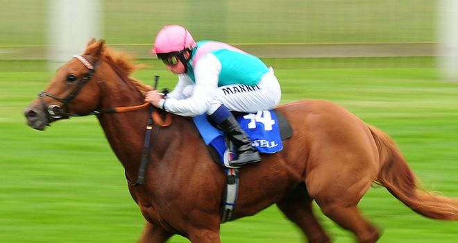 Seek Again: Newmarket winner