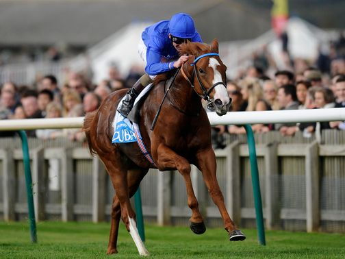Dawn Approach: A Future Champion in the making?