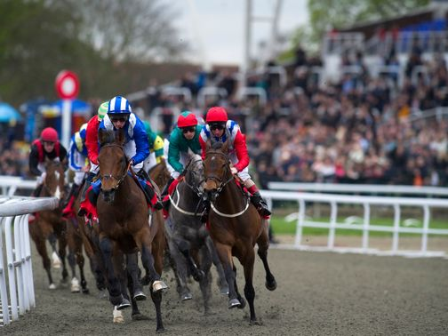 Kempton plays host to a flat card