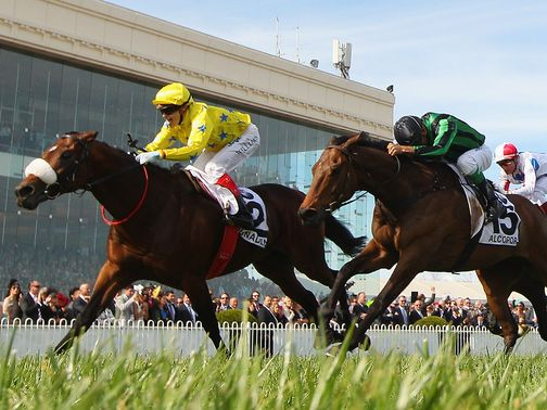 Dunaden: Ran too free at Sha Tin