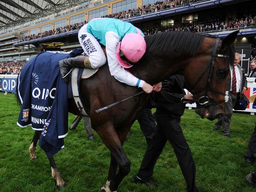 Frankel: Set to be crowned Horse Of The Year