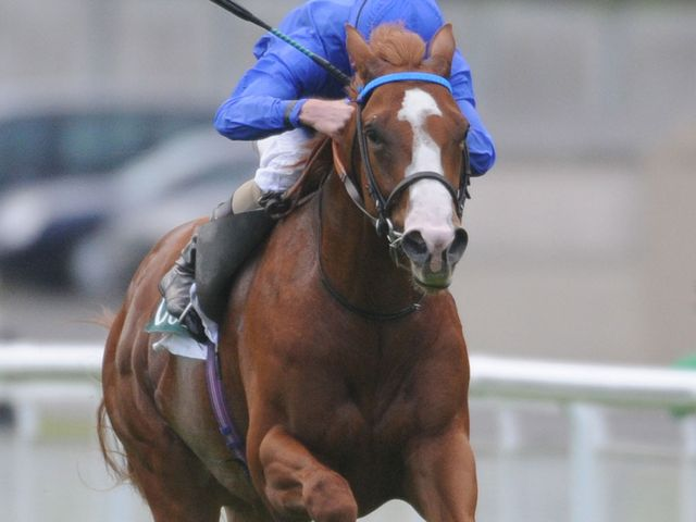 Dawn Approach: Dewhurst favourite
