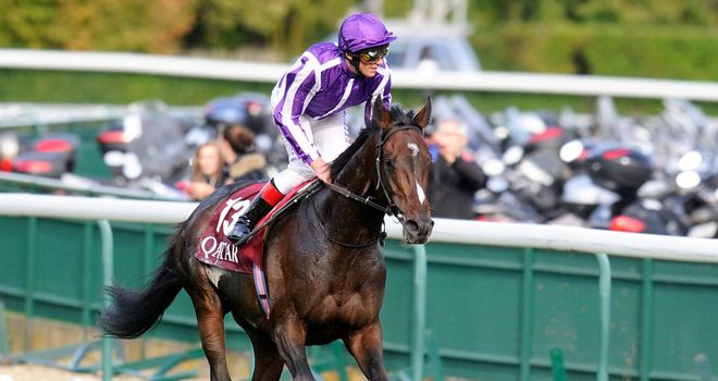 Camelot: Horse of the year