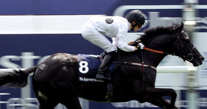Dandino: On travels again to Hong Kong for valuable December prize