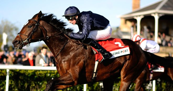 Kingsbarns: One of eight for O'Brien in the Great Voltigeur