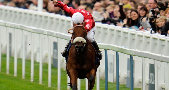 Maarek: Victorious at Ascot