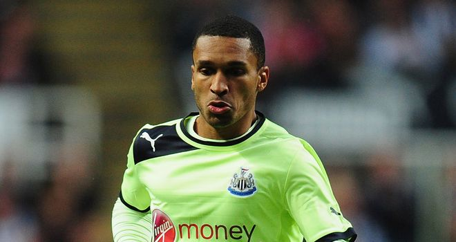 Sylvain Marveaux: French midfielder has been a fringe player this season for Newcastle United