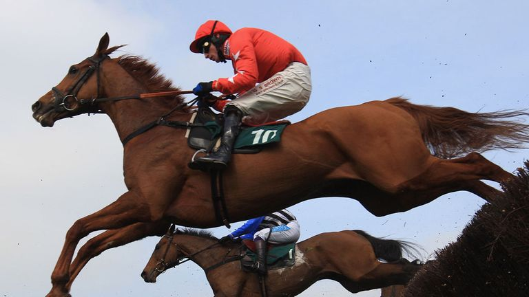 Harry The Viking: Will be entered in John Smith's Grand National