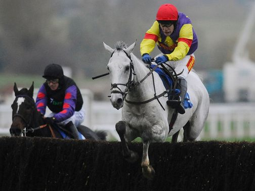 Grands Crus: Will take all the beating at Cheltenham